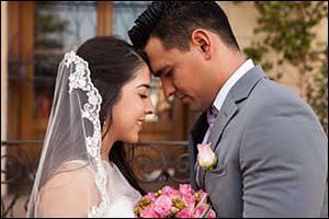 plan large wedding in swansea
