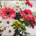 Affordable Summer Wedding Flowers for Premier Wedding Venue