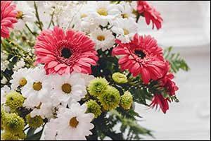 premier wedding venue in southeastern massachusetts